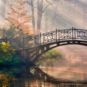 Telón - Forillo Puente en el lago